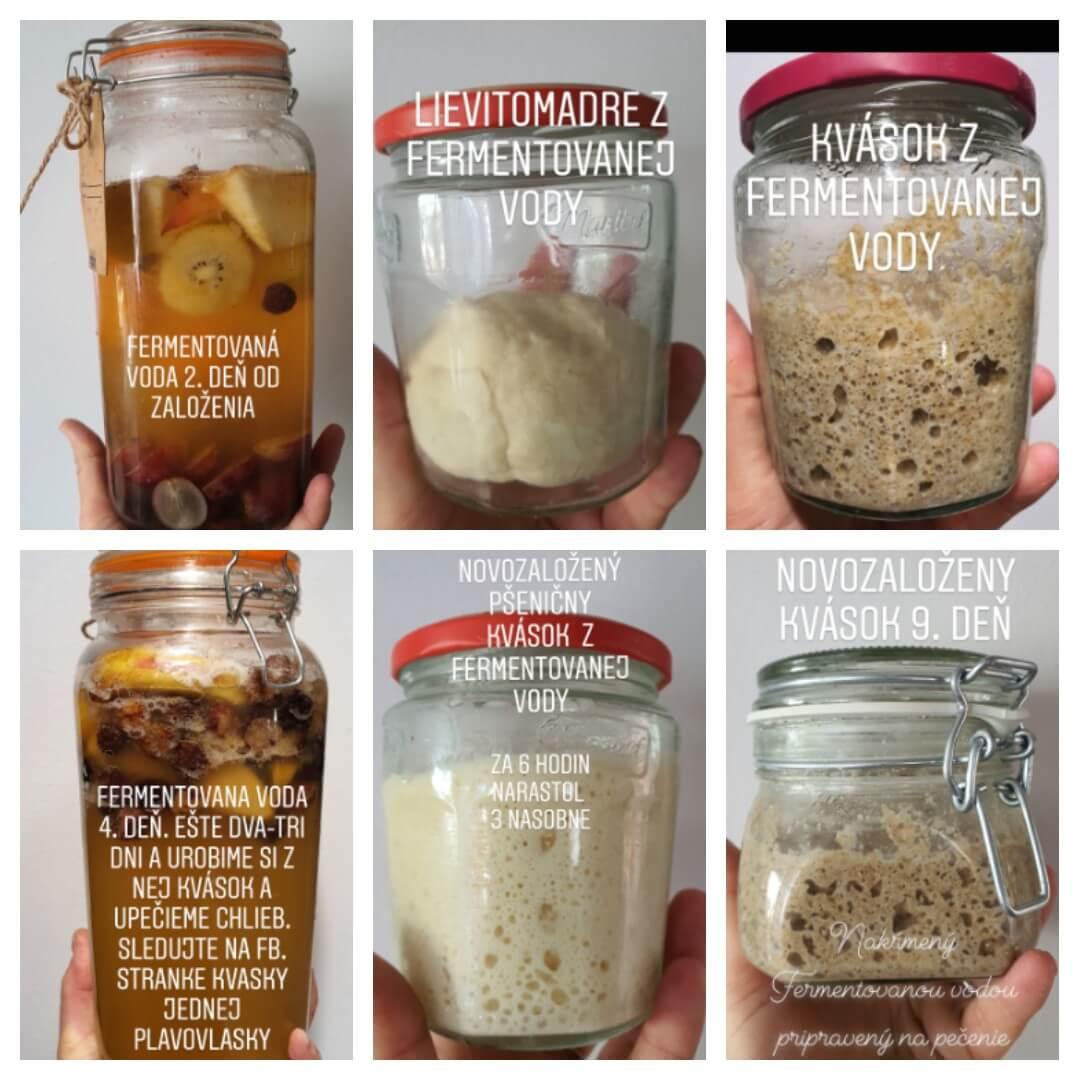 Fermentovaná voda a založenie kvásku z fermentovanej vody.