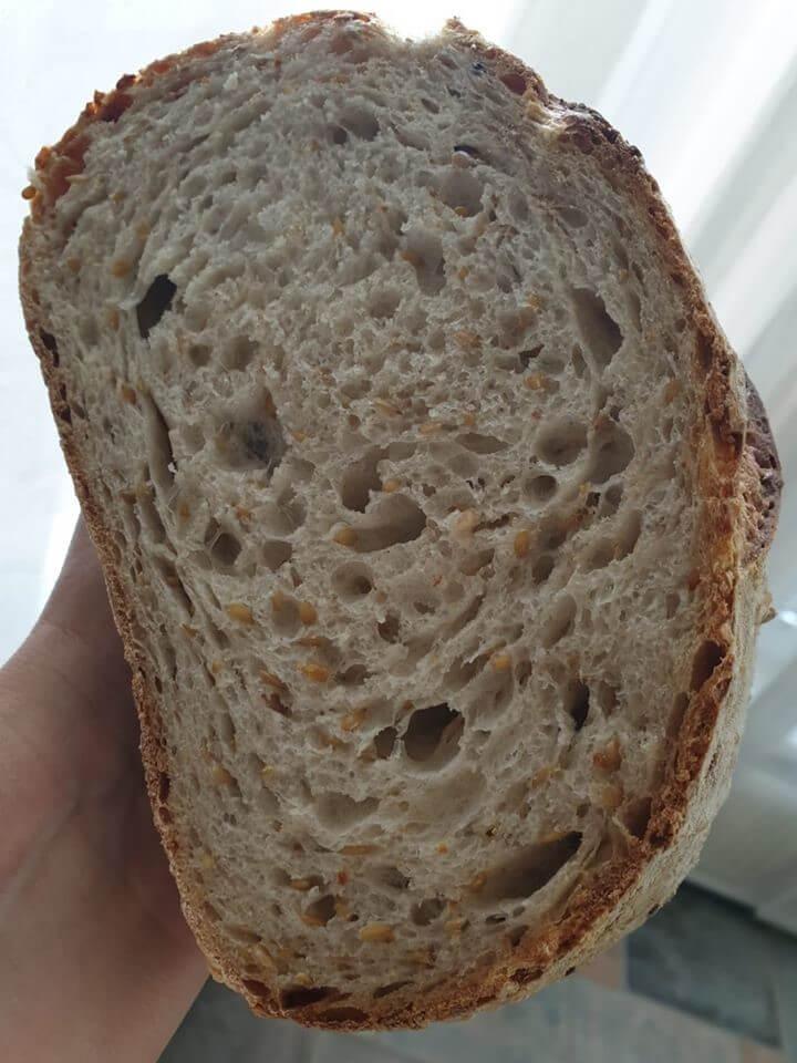 Biely chlebík