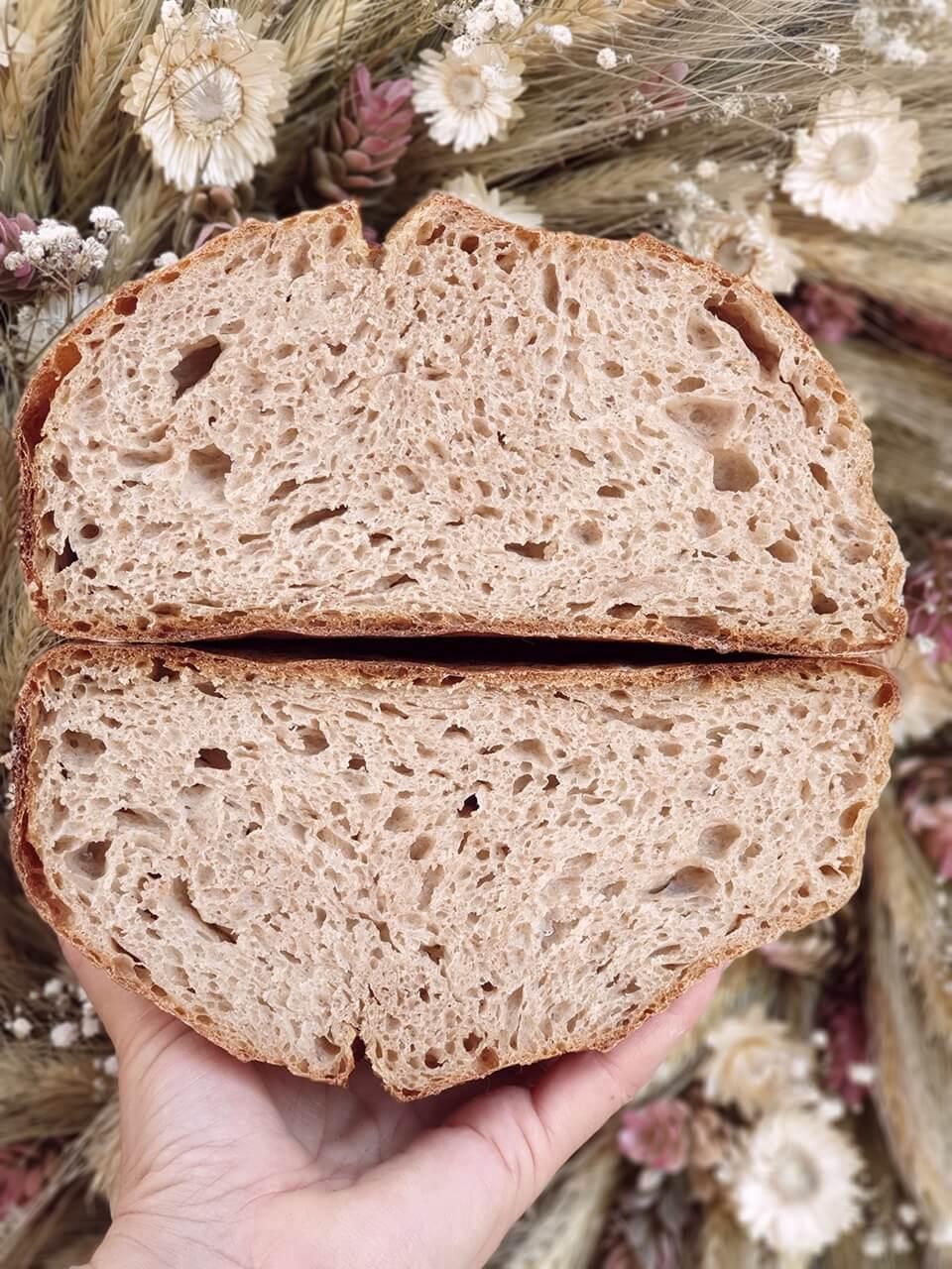 Chlieb Aurora